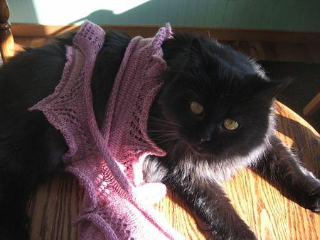 Fuzzle models a scarf