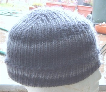 Sws_hat_sideview