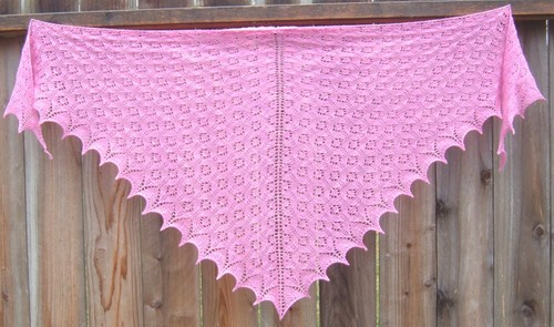 Pink_angel_lace